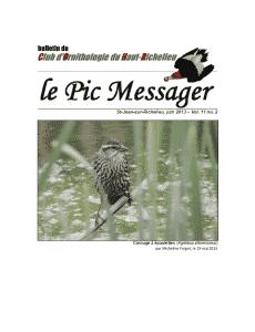 Le Pic Messager juin 2013